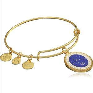 Alex and ani cancer bracelet